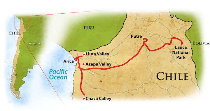 Birding Northern Chile Trip Map