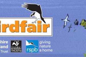 British Birdwatching Fair: la gran fiesta mundial de las aves