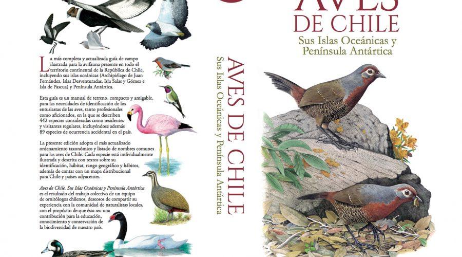 """Guía """"Aves de Chile"""": Un compañero de campo para pajareros desesperados"""